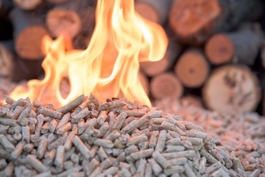 biomassa per a la llar