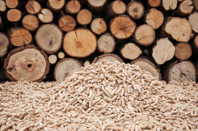 instal·lacions de sistemas de biomassa